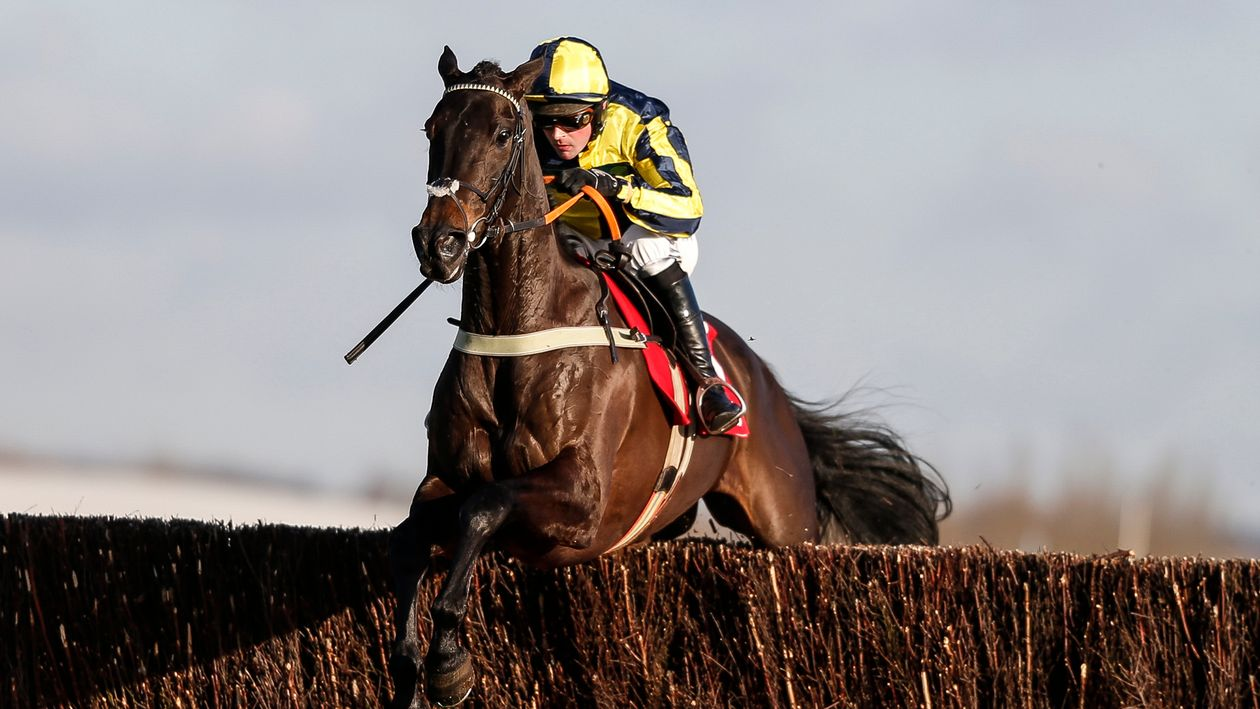 Ben Pauling stable tour ahead of the start of the National ...