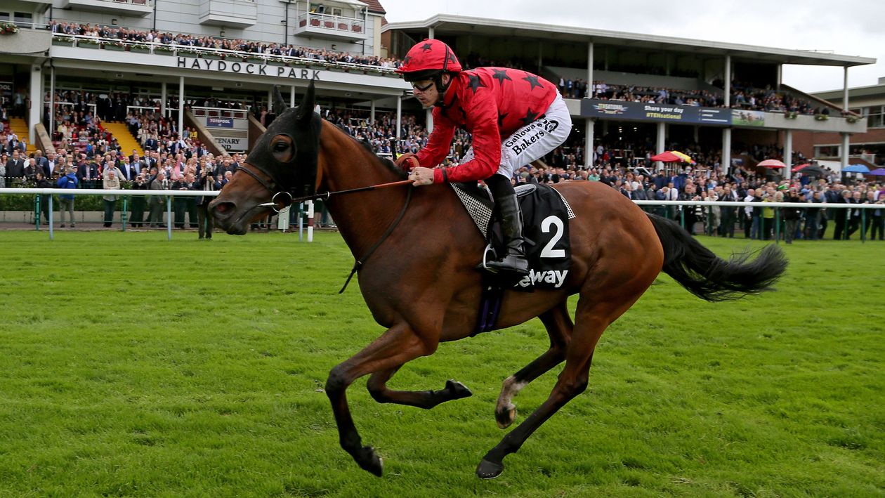 Champions Day for Pinnacle Stakes winner Bateel - Horse ...