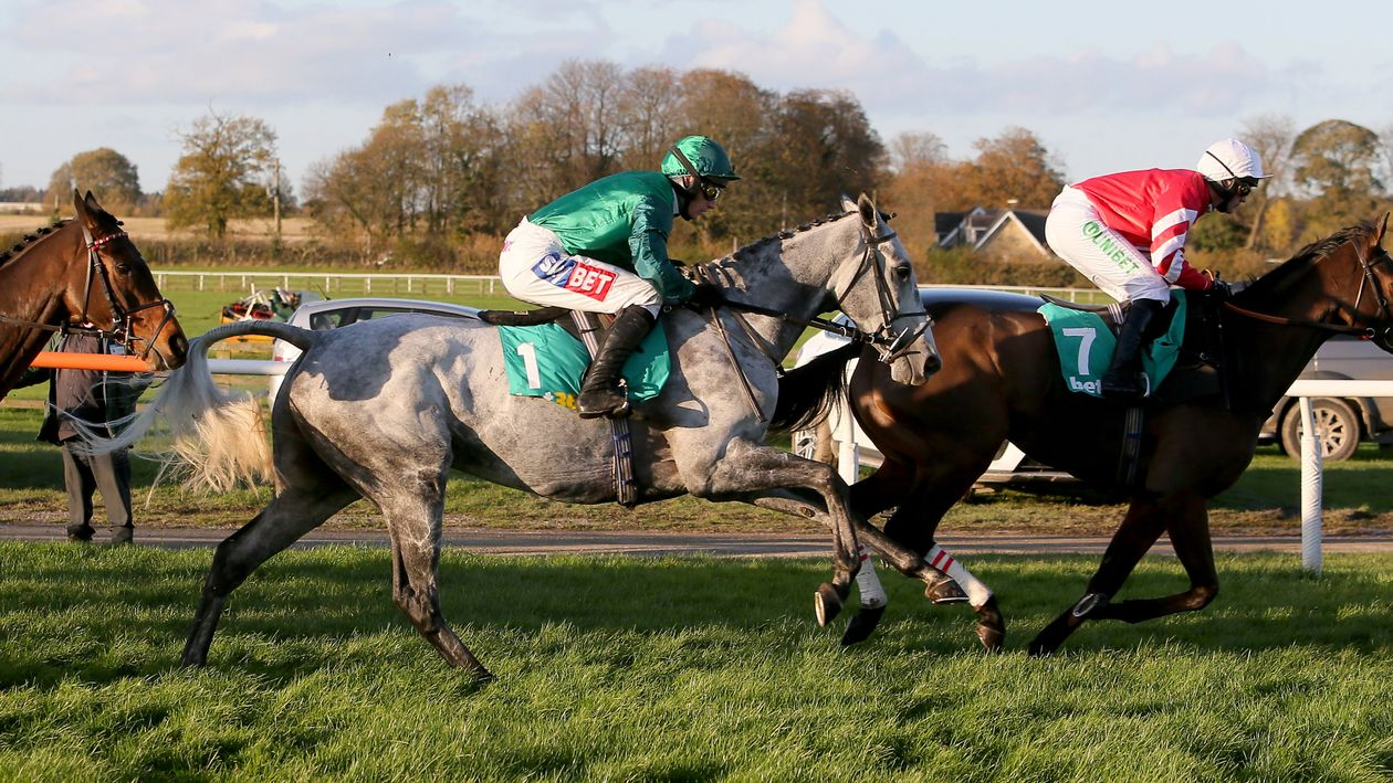 sportinglife video preview of Betfair Chase - Horse Racing ...