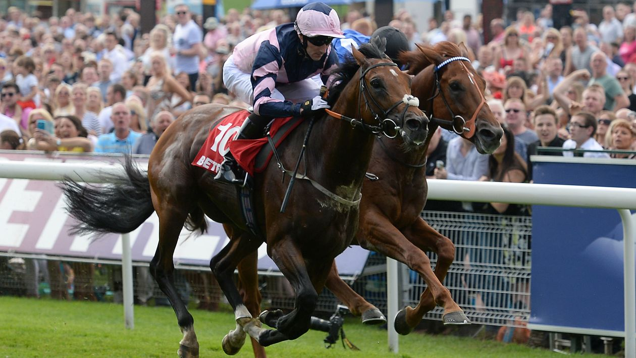 Saturday's racing preview and selections - Horse Racing ...