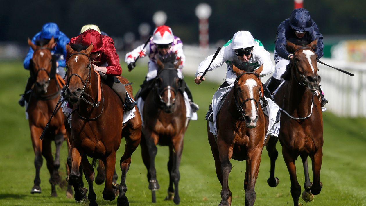 Saturday's guide to the ITV7 from Newbury, Newmarket and ...