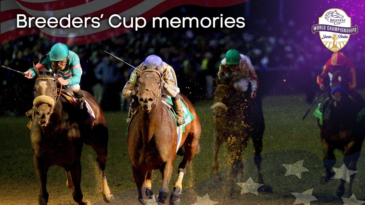 Breeders Cup Memories From Arazi To Zenyatta Horse
