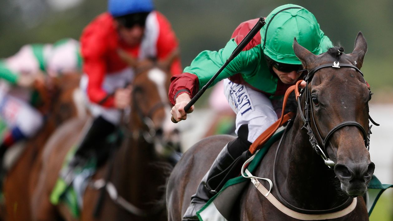 Simon Holt: The end is Ny   Free betting preview and tips ...
