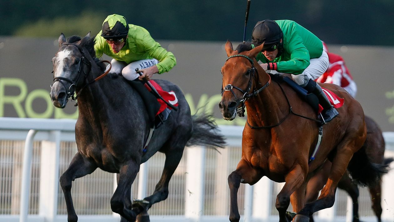 Thursday's racing preview, tips and selections - Horse ...