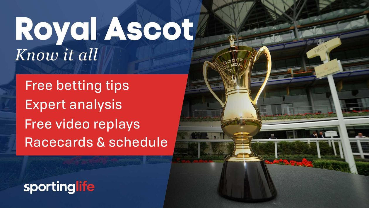 Royal Ascot Tips Racecards Betting Odds Race Schedule