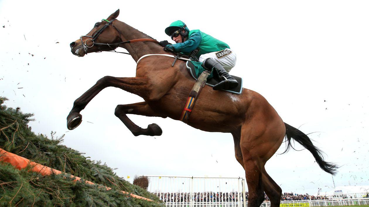Daryl Jacob Looks Ahead To L Ami Serge Run In Sky Bet
