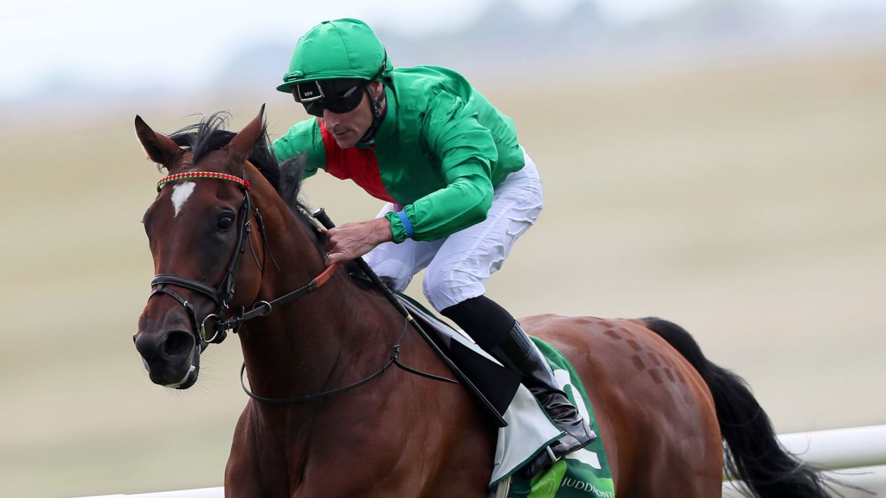 Urban Fox Wins Pretty Polly Stakes At The Curragh Horse Racing