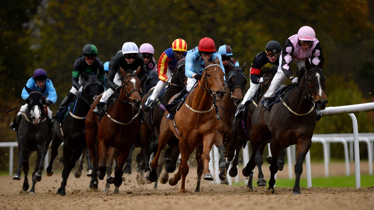 Horse betting tips wolverhampton binary options trading signals login