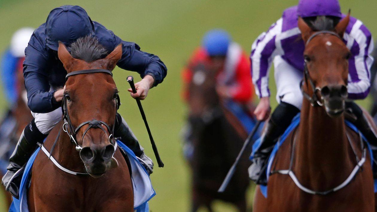 Sixteen confirmations at six-day stage for Oaks