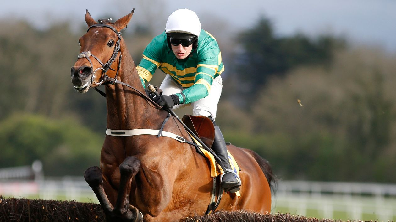 Great Field Set To Star At Navan On Friday Horse Racing Sporting Life