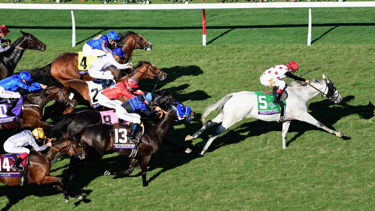 Breeders Cup Review World Approval Wins The Mile As