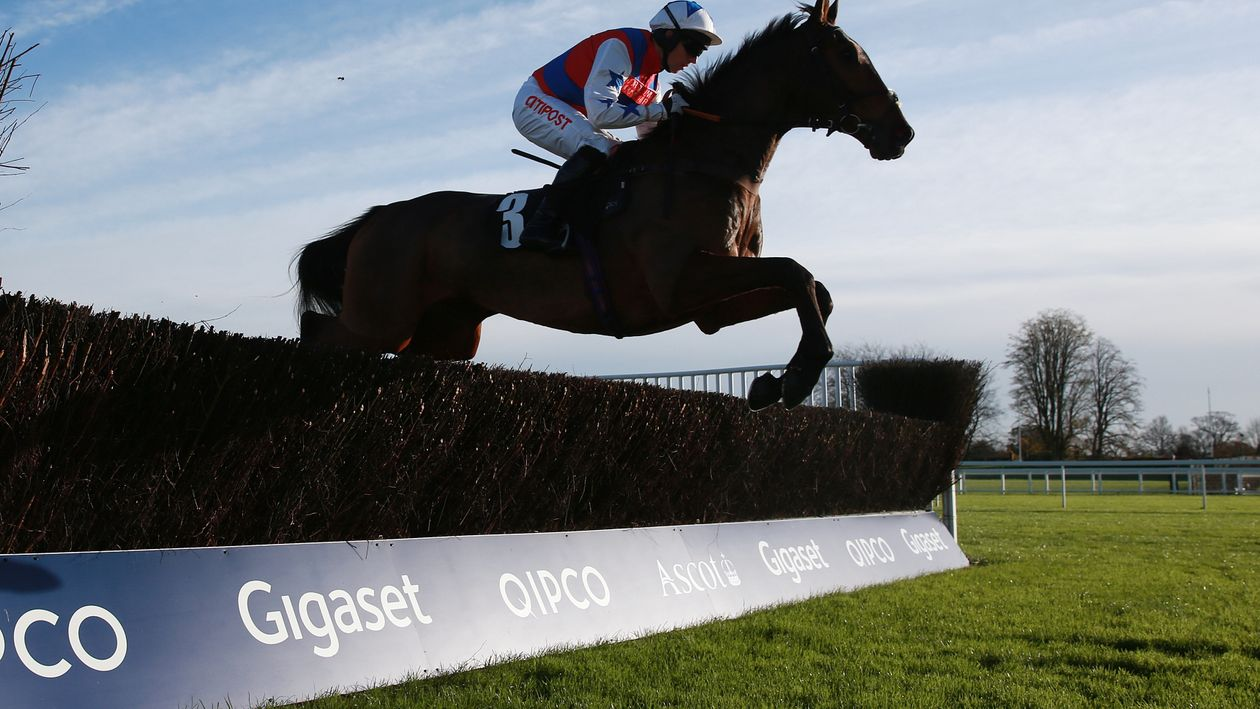 Ben Linfoot Value Bet Free Horse Racing Betting Preview