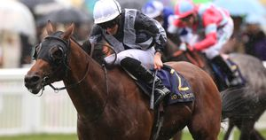 Ryan Moore rides Circus Maximus to victory at Royal Ascot