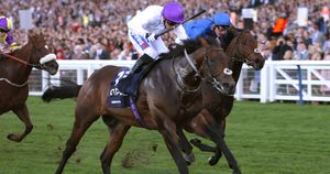 Sands Of Mali wins at Ascot