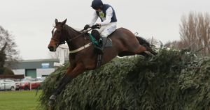 Walk In The Mill clears the last as he wins a second Becher Chase