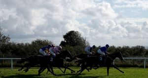 Riders during the EBF Novice Stakes at Brighton Racecourse