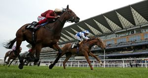 Muchly beats Queen Power at Ascot