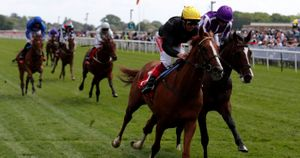 Stradivarius wears down Southern France to win the Yorkshire Cup