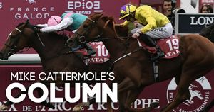 Check out Mike Cattermole's Arc column