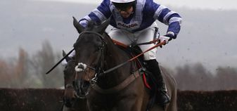 Frodon motors home to win again at Cheltenham