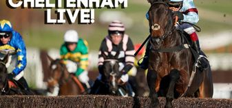 Follow our live racing blog from Cheltenham