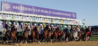 The Breeders' Cup returns to Churchill Downs this year
