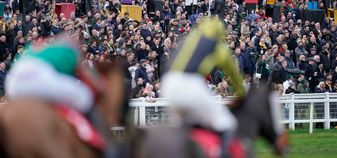 Packed stands at Sandown on Saturday