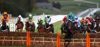 Midnight Shot in action at Cheltenham