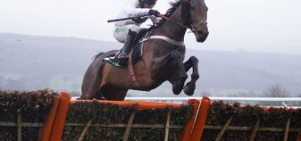 Brain Power jumps to victory in the Unibet International Hurdle
