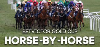 Dave Ord runs through every horse in the BetVictor Gold Cup