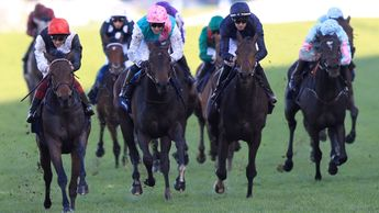 Star Catcher wins at Ascot