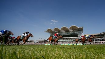 Action from Newmarket's Craven Meeting