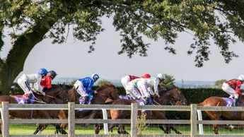 They race at Beverley on Thursday