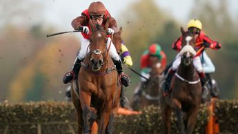 Ecu De La Noverie winning at Newbury