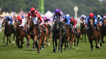 Le Brivido gets the better of Spirit Of Valor at Royal Ascot