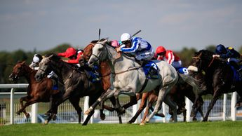 Thundering Blue (grey) on the way to victory at Sandown