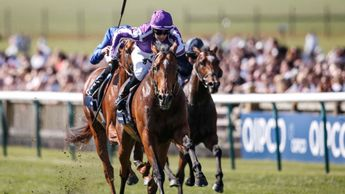 Saxon Warrior wins the QIPCO 2000 Guineas