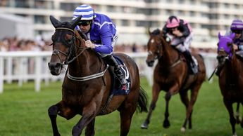 Stratum - ante-post favourite for the Sky Bet Ebor
