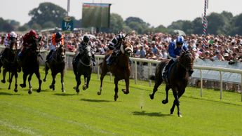 Wadilsafa impresses at York