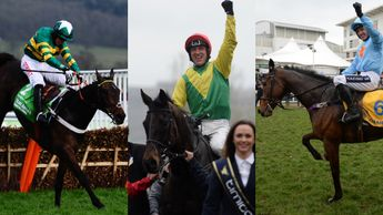 Last year's stars Buveur D'Air, Sizing John and Un De Sceaux
