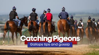 Latest tips from around the major training centres