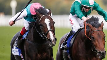 Weekender (left) can take the big staying race on Thursday evening