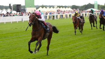 Calyx and Frankie Dettori win the Coventry