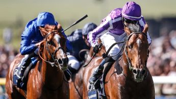 Saxon Warrior - not at best in Investec Derby