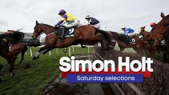 Happy Diva is backed at Cheltenham