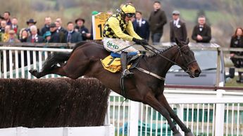 Al Boum Photo soars over the last in the Magners Cheltenham Gold Cup
