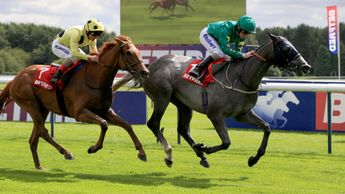Frankuus wins from Mount Logan at Haydock