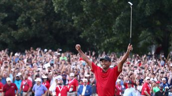 Arms aloft: Tiger Woods celebrates his first PGA Tour win since 2013