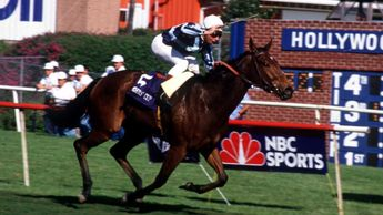 Miesque wins her first Breeders' Cup Mile in 1987