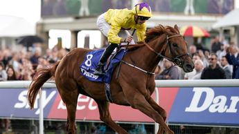 Sea Of Class pictured winning at York